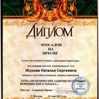 Мастер Жукова