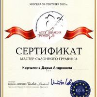 korchagina-diplom-11