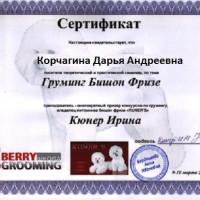 korchagina-diplom-2