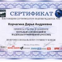 korchagina-diplom-3