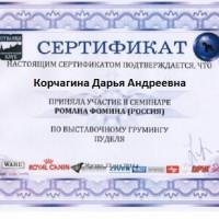 korchagina-diplom-4