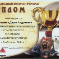 korchagina-diplom-6