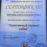sert-sergeeva2