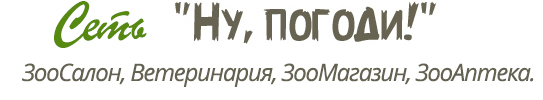 Зоосалон в Москве Salon-Zoo.Ru Ну погоди — каждый владелец животного может быть уверен в недорогом и качественном предоставлении услуг на дому и в салоне нашими профессиональными мастерами груммёрами в 2018 году, ваш любимец будет доволен и его шерсть будет идеальной. Модельные стрижки собак и кошек и обучение стрижке и грумингу собак и кошек производятся лучшими мастерами грумерами Москвы. Мы работаем в Москве, Реутов, Новокосино, Косино, Некрасовка, Салтыковка, Балашиха, Новогиреево, Жулебино, Люберцы, Щелково, Котельники, Лыткарино, Перово, Выхино, Железнодорожный, Ивановское, Гольяново, Измайлово, Текстильщики, Кузьминки, Марьино, Братеево, Капотня.